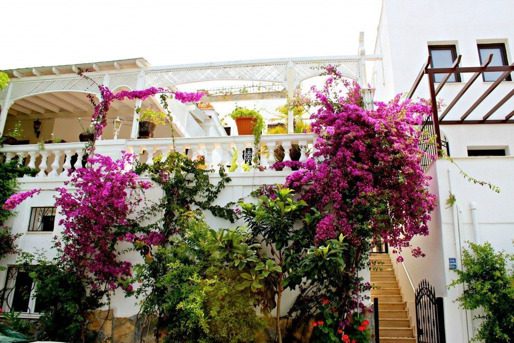 What to do in Bodrum Turkey, what to see in Bodrum Turkey, bodrum turkey city guide, best place to go in turkey, where to go in turkey, free online bodrum turkey guide